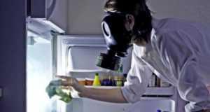 Как убрать запах из холодильника в домашних условиях легко и просто