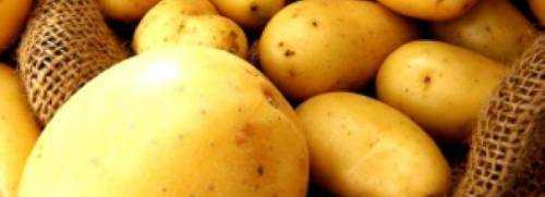 Картофель лимонка описание сорта фото