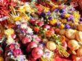 Как хранить лук зимой в домашних условиях: на еду и на посадку