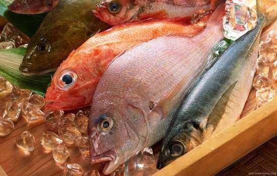 Рыба: калорийность польза и вред. Преимущества и состав красной и речной рыбы