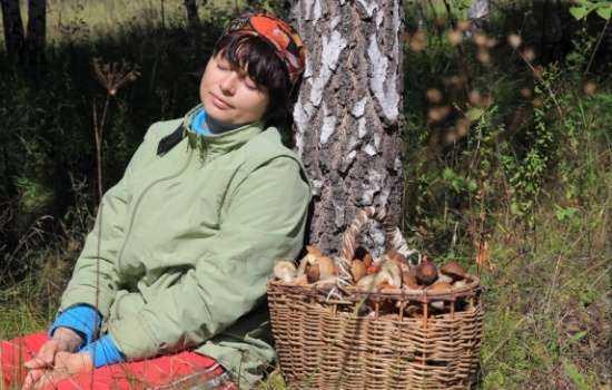 К чему снятся грибы женщине: собирать грибы, готовить грибы, есть грибы?