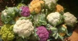 Цветная капуста: лучшие сорта с описанием и фото.