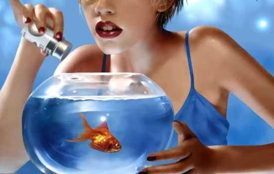 К чему снится аквариум с золотыми рыбками или с пираньями?