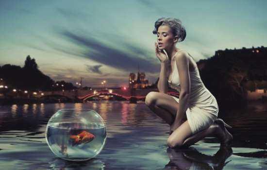 К чему снится аквариум: с рыбками, черепашками или змеями?