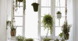 5 идей как оформить окно без штор